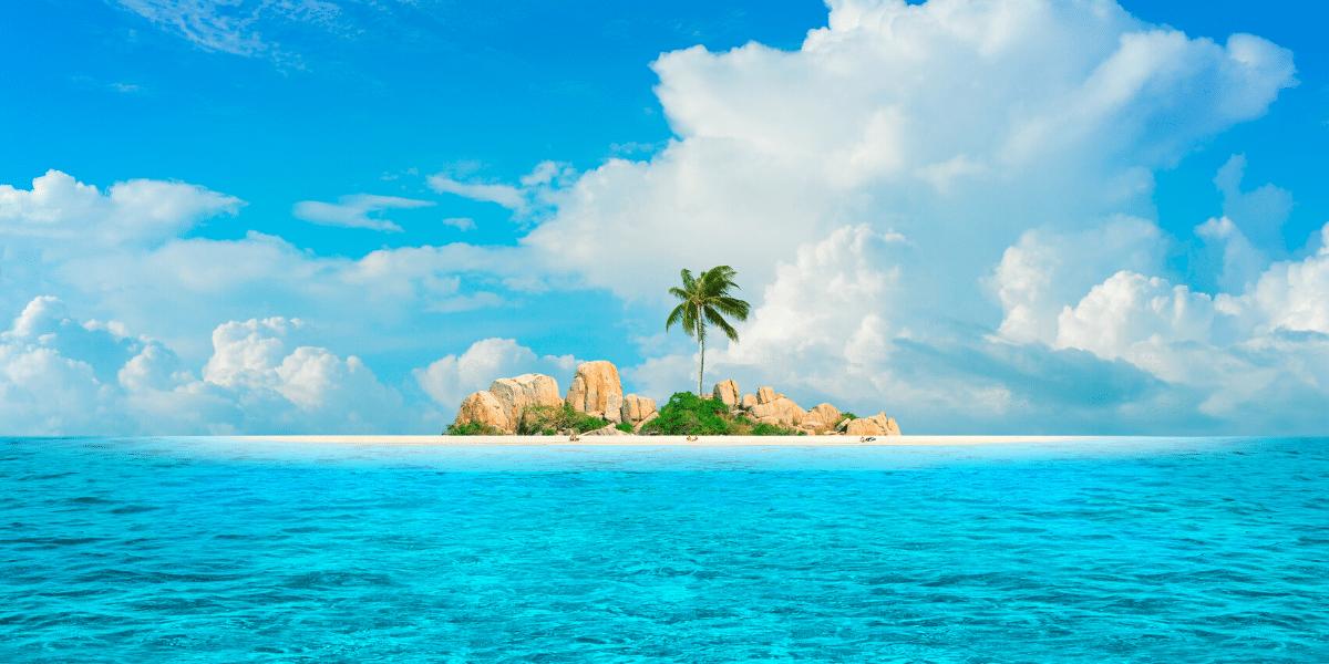 island with blue sea and palm tree