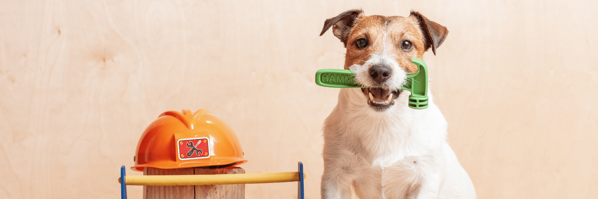 Dog with Tools