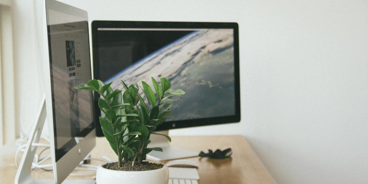 two desktop screens