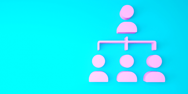A pink organogram graphic showing team hierarchy on a bright blue background.